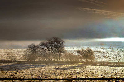 Cold Wintery Morning Over The Valley In Sonoma County Print by Wernher Krutein
