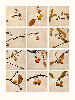 Collage Paradise Apple Print by Alexander Senin