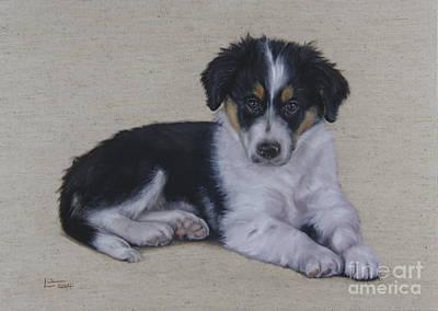 Collie Pup Original by Linden Hopwood
