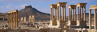 Palmyra Photograph - Colonnades On An Arid Landscape by Panoramic Images