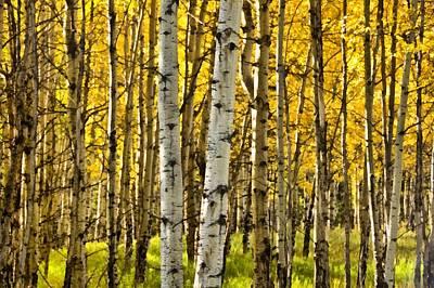 Colorado Fall Aspens 9 Print by Angelina Vick