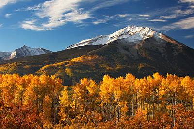 Colorado Gold Print by Darren  White