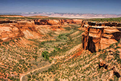 Canyon Painting - Colorado National Monument Ute Canyon by Christopher Arndt