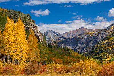Fall Colors Photograph - Colorado's Carpet Of Color by Darren  White