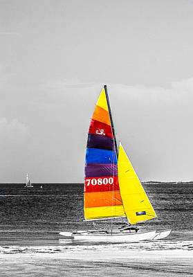 Colored Sails Print by Shelby  Young