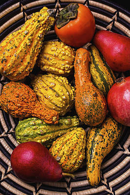 Colorful Autumn Gourds Print by Garry Gay