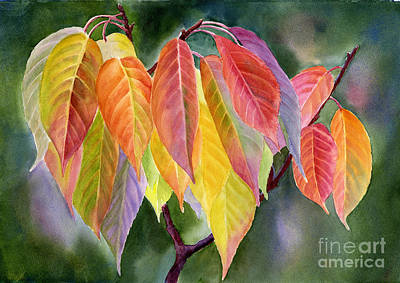 Colorful Fall Leaves With Background Print by Sharon Freeman