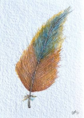 Colorful Feather Print by Anne Clark