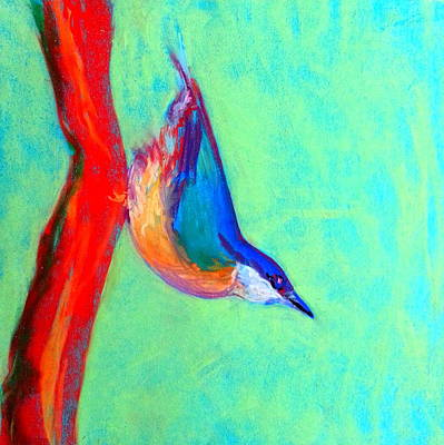 Loose Style Painting - Colorful Nuthatch Bird by Sue Jacobi
