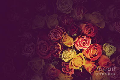 Rose Photograph - Colorful Roses Background by Michal Bednarek