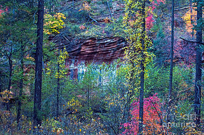 West Fork Photograph - Colorful Wall by Brian Lambert