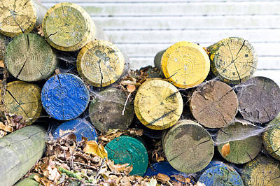 Colorful Wood Logs Print by Tom Gowanlock