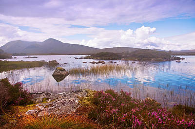 Colorful World Of Rannoch Moor. Scotland Print by Jenny Rainbow
