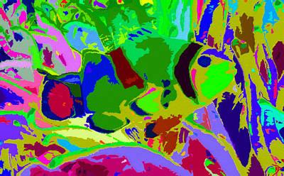 Clown Fish Digital Art - Colorfullfish by David Lee Thompson