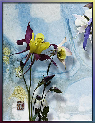 Columbine Blossom With Suminagashi Ink Print by Peter v Quenter