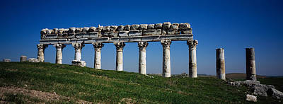 Ancient Civilization Photograph - Columns On A Landscape, Apamea, Syria by Panoramic Images