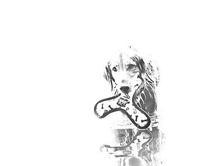 Retriever Digital Art - Come Play With Me  by  Kelly Hayner