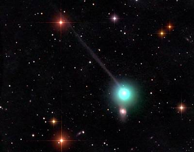 Comet Photograph - Comet Encke by Damian Peach