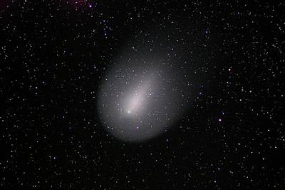 Apo Photograph - Comet Holmes by Damian Peach