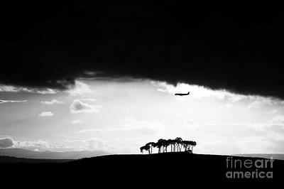 Flying Planes Photograph - Coming Into Land  by Tim Gainey