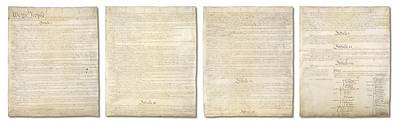 Complete Us Constitution Print by Ron Hedges