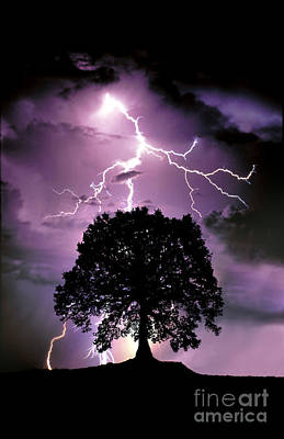 Composite Of Lightning Hitting A Tree Print by Mike Agliolo