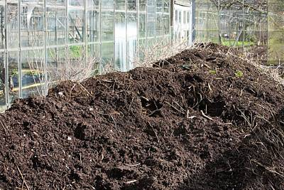 Compost Heap Print by Ashley Cooper