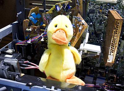 Humor Photograph - Computer Repair Duck by William Patrick