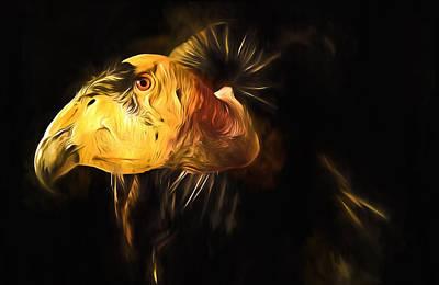 Vulture Mixed Media - Condor Americana - Don't Mess Around With Me by Georgiana Romanovna