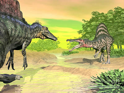 Anger Digital Art - Confrontation Between Two Spinosaurus by Elena Duvernay