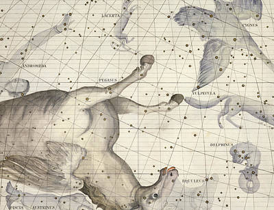 Border Drawing - Constellation Of Pegasus by Sir James Thornhill