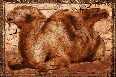 Camel Digital Art - Content by Jack Zulli