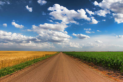 Back Roads Photograph - Contrast by Chris Harris