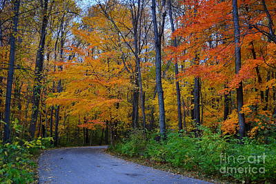 Indiana Photograph - Cool Creek Park In Fall by Amy Lucid
