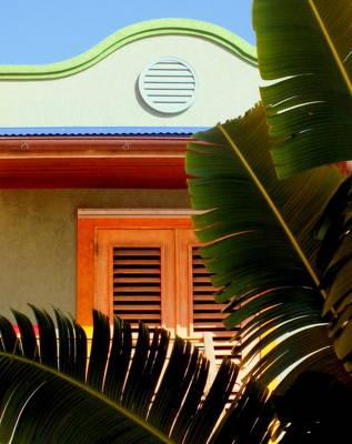 Cool Tropics Print by Karen Wiles