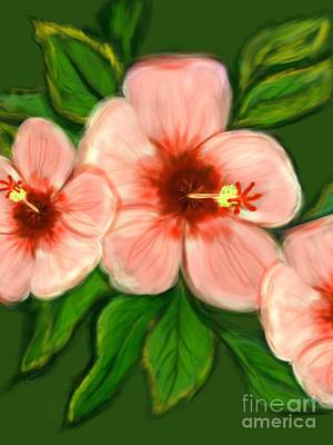 Coral Hibiscus  Print by Christine Fournier