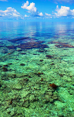 Coral Reef Near The Island At Peaceful Day. Maldives Print by Jenny Rainbow