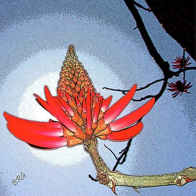 Coral Tree Print by Ben and Raisa Gertsberg