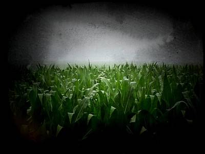 Contry Photograph - Corn Field Storm II by Michael L Kimble