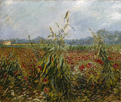 Cornfield Painting - Corn Fields And Poppies, 1888 by Vincent van Gogh