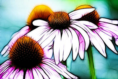 Abstracted Coneflowers Digital Art - Aqua And The Coneflowers by Sherry Wyne