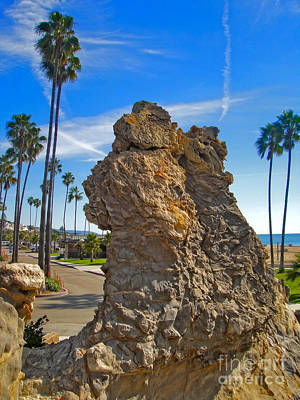 Corona Del Mar State Beach - 02 Print by Gregory Dyer