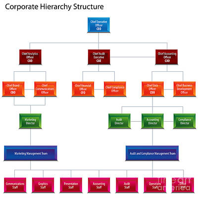 Corporate Hierarchy Structure Chart Print by John Takai