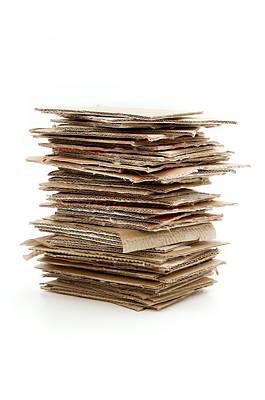 Cardboard Photograph - Corrugated Fiberboard by Fabrizio Troiani
