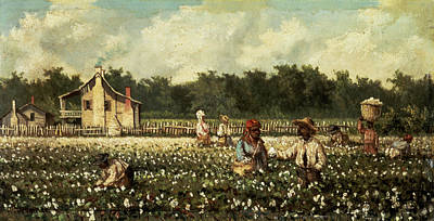 Cotton Field, Mississippi Oil On Panel Print by William Aiken Walker