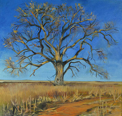 Cottonwood On The North 40 Print by Pattie Wall
