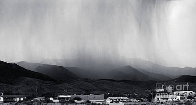 Cottonwood Rain Print by Arne Hansen