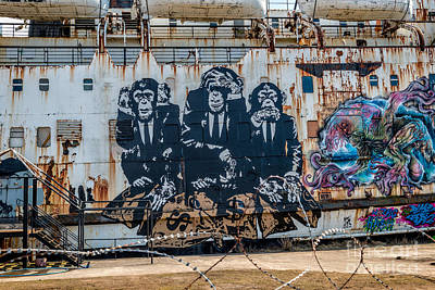 Mural Photograph - Council Of Monkeys 2 by Adrian Evans