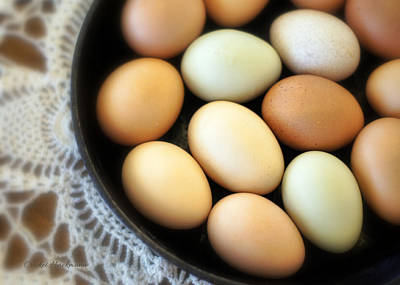 Egg Print featuring the photograph Country Egg Skillet by Cricket Hackmann