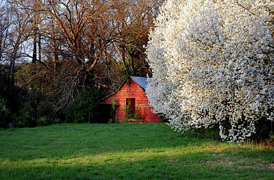 Spring Scenes Photograph - Country Gem by Skip Willits